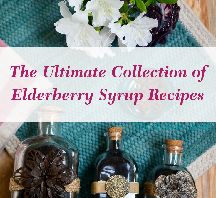 The Ultimate Elderberry Syrup Recipe Collection