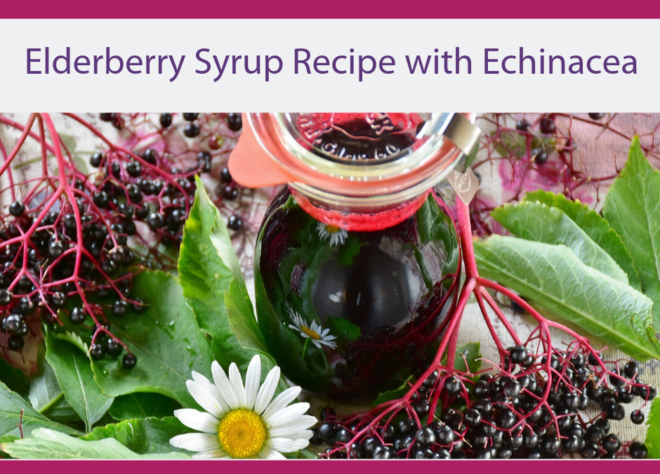 Elderberry Syrup Recipe with Echinacea