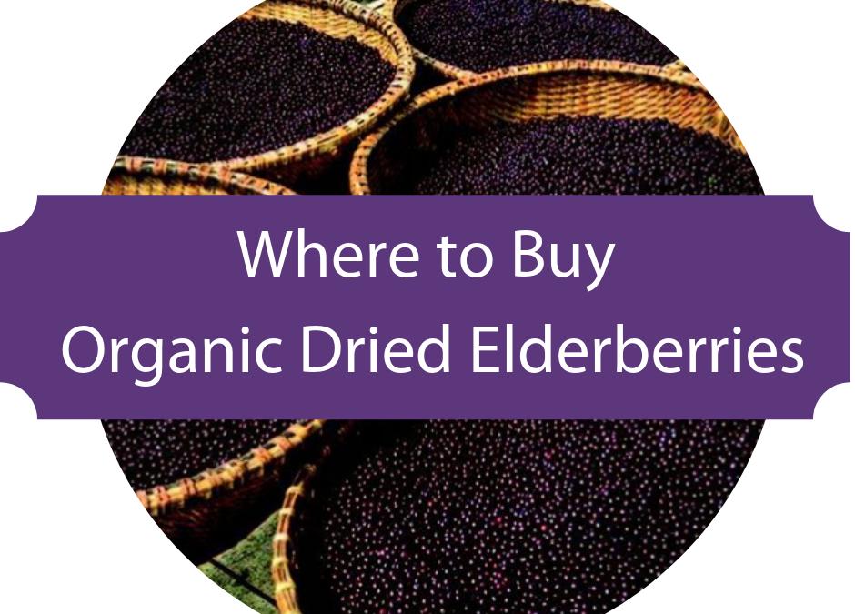 Where to Buy Elderberries for Elderberry Syrup