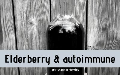 Are Elderberries Safe for Autoimmune?