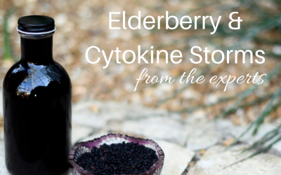 What Experts Are Saying About Elderberry+Cytokine Storms